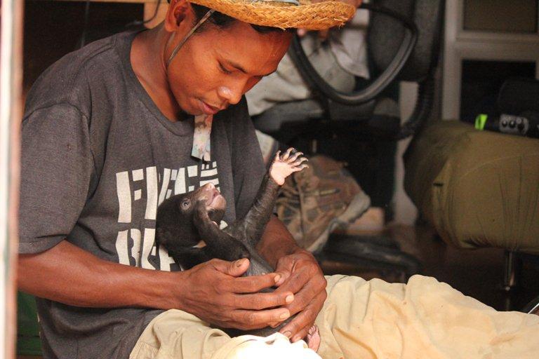 Bear Rescue (Cambodia)